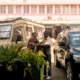 Travel Tanzania - Things to do _-Safari