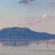 Lake Natron: Tausende Flamingos sind hier zuhasue