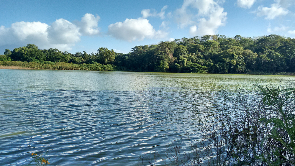 Isls Ometepe, Charco Verde