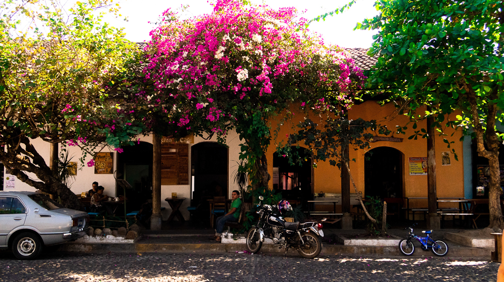 Suchitoto, El Salvador: houses and flowers