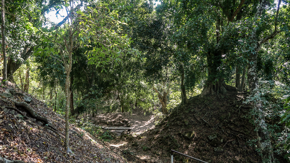Maya Ruins in Copan, Honduras covered by forest