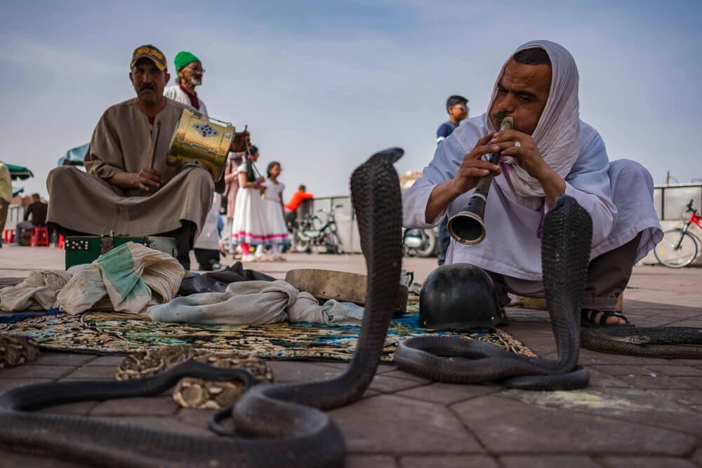 Schlangenbeschwörer in Marrakesch