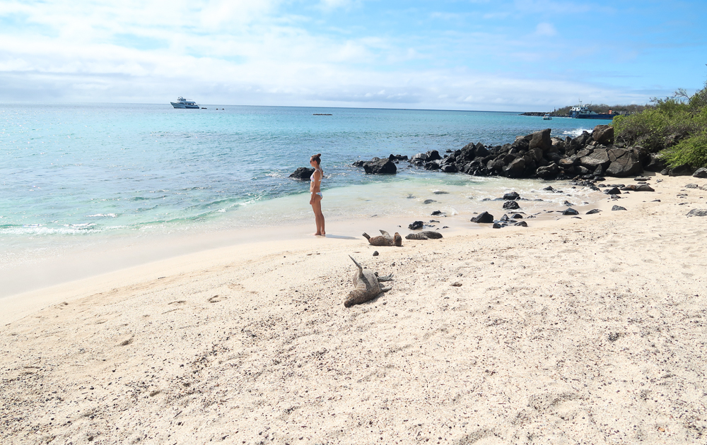 Galapagos Islands: Playa el Man on san Cristobal
