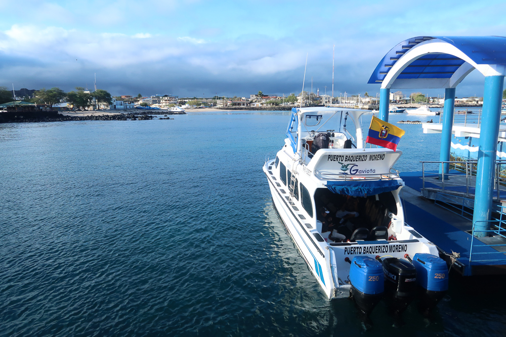 Galapagos islands: San Cristobal: ferry to Santa Cruz