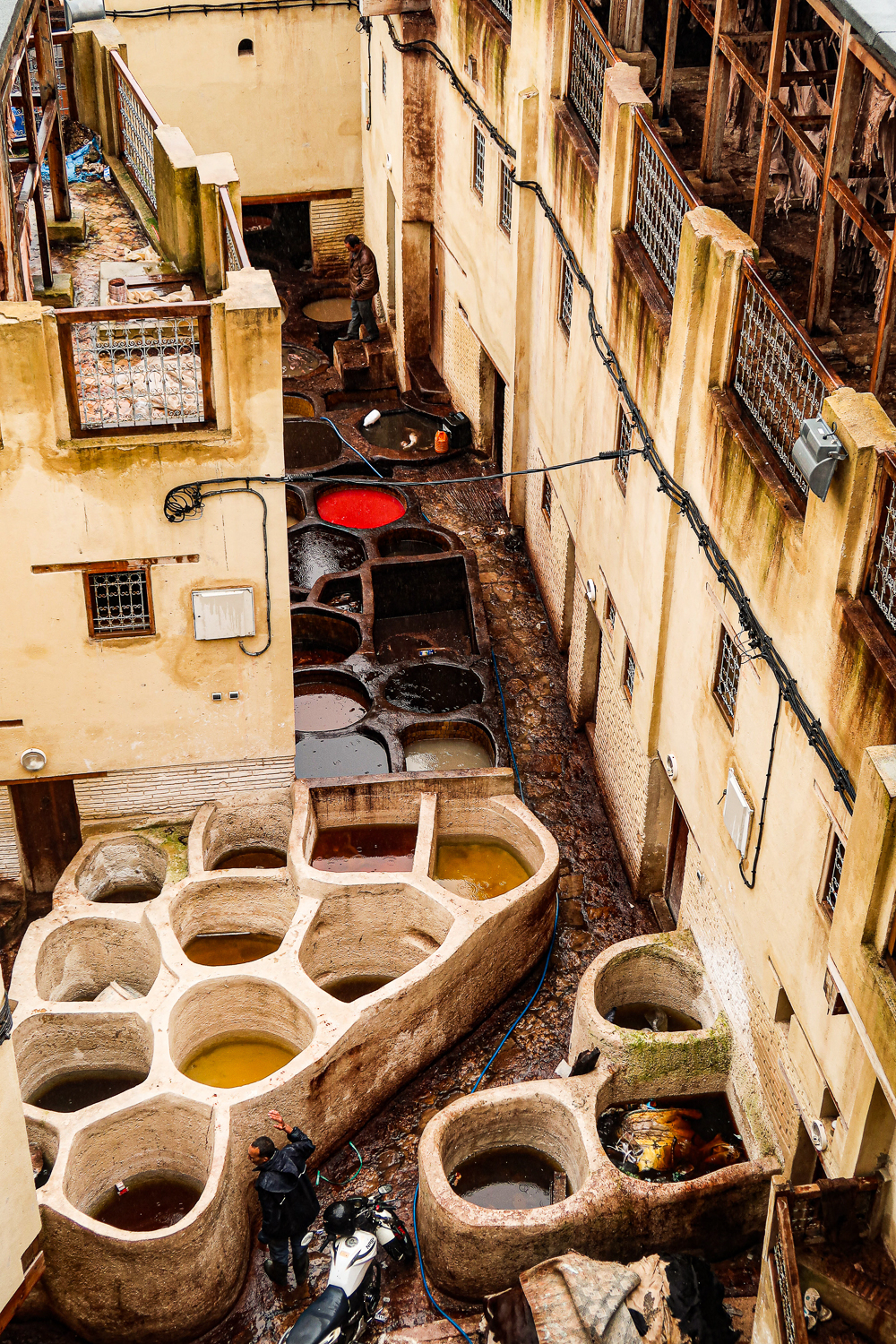 Tannery Fez, Morocco