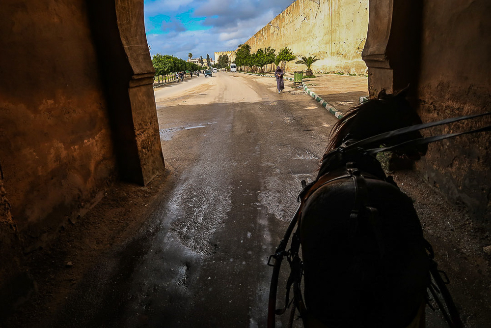 Meknes, Morocco: Horse carriage ride