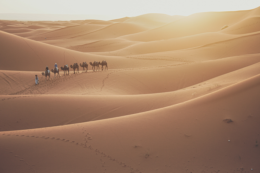 Best time to travel Morocco's desert